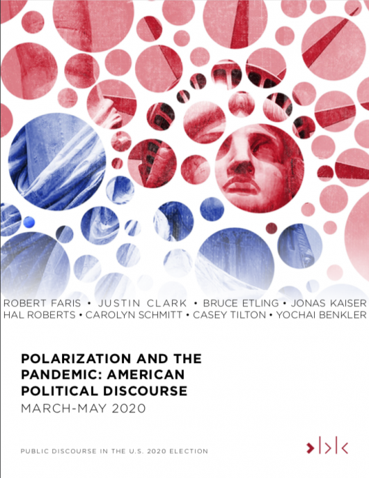Polarization and the Pandemic